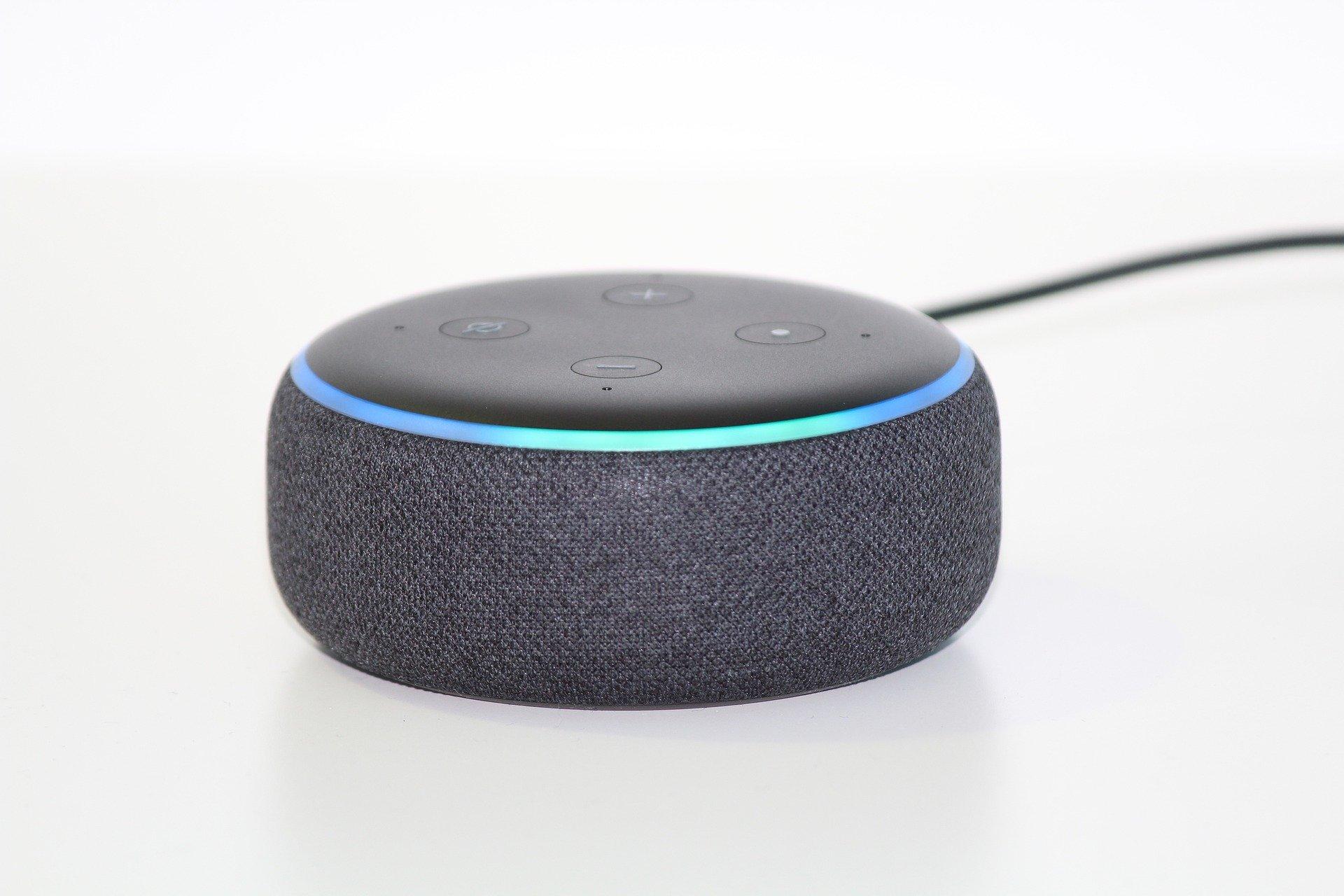 Smart Speaker Nutzung